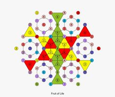 The amazing 3-6-9 and Flower of Life | palmi