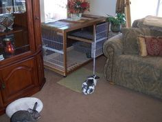 Awesome indoor rabbit cage - website also has tons of good info on rabbit care