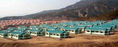 라선시 피해지역주민들 새집들에 입사
