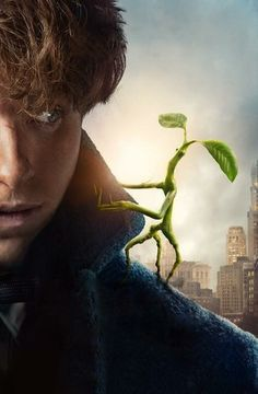 There are no strange creatures, just blinkered people. Newt Scamander (Fantastic Beasts The Crimes of Grindelwald) Mundo Harry Potter, Harry Potter Love, Harry Potter Universal, Harry Potter World, Hogwarts, Slytherin, Images Harry Potter, Fantastic Beasts And Where, Disney Films