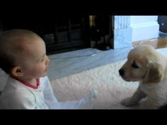 SO cute! Baby playing with puppy.
