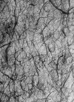 sand whirlwinds, Mars