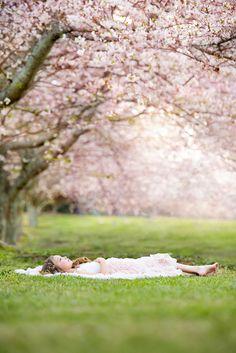 Blossom Garden, Blossom Trees, Spring Photography, Family Photography, Picture Poses, Picture Photo, Cherry Blossom Pictures, Spring Family Pictures, Family Maternity Photos