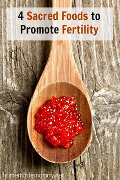 4 Sacred Foods to Promote Fertility | www.homemademommy.net