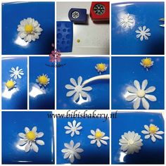 More Wafer Paper Flowers From Cakemade Tutorials Pinterest