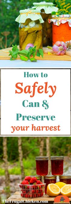 Itching to preserve your harvest but want to be safe as well? Here's how to preserve vegetables - safely.
