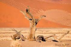 woestijn landschap - Google zoeken