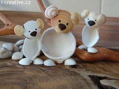 Medvídci z mušlí