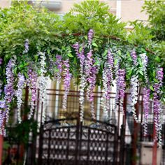 Set of 12 artifical wisteria string wedding decor hanging silk free shipping artificial flower wedding decoration vine wisteria bean decoration rattails flower vine ceiling flower rattails junglespirit Images