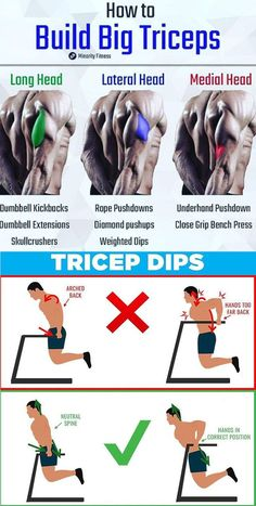 Build Your Triceps with the Ultimate Dianabol Pills that are Legal and Free of Side Effects Too legal dianabol dianabol bodybuilding dianabol benefits dianabol muscle dianabol steroid Gym Workout Chart, Workout Routine For Men, Gym Workout Tips, Workout Exercises, Dip Workout, Easy Workouts, Calisthenics Workout, Biceps Workout, Forearm Workout