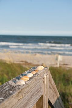 Visit Holden Beach, NC for family-friendly activities, great restaurants or take a bike ride to visit pristine beaches. Learn more about Holden Beach. I Love The Beach, Villa, Beach Scenes, Summer Beach, Beach Bum, Beach Cottages, Sea Shells, Seaside, Coastal