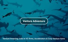 #VentureInvesting Jobs in VC firms, Accelerators and Corporate Venture Arms https://tapwage.com/channel/venture-adventure