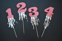 Glitter Number Birthday Cake Topper with Fringe by twinkleandtoast Number Birthday Cakes, Birthday Numbers, Birthday Cake Toppers, Number Cake Toppers, Diy Cake Topper, First Birthday Photos, Birthday Pictures, Birthday Room Decorations, Finger Puppet Patterns