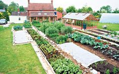 How to get rid of weeds forever. Charles Dowding's garden plot weed free and with plants growing
