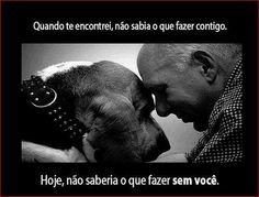 O amor de um cão é para sempre. Seria bom que o dos humanos também fosse. Nunca abandonem os vossos animais!!!