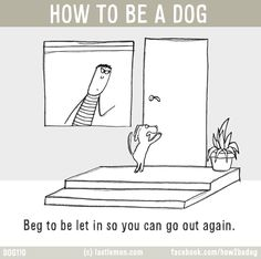 http://lastlemon.com/dogs/