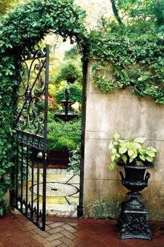 Wrought iron gate, climbing vines, and (limestone?) stone wall. Gorgeous!