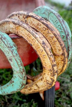 Fabulous rusty horseshoes!  The perfect turquoise and yellow.
