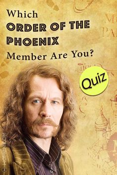 Take this Harry Potter personality quiz to figure out which Order of the Phoenix member you would be. Phoenix Harry Potter, Harry Potter Quiz, Harry Potter Hogwarts, Hp Quiz, Harry Pitter, Harry Potter Activities, Harry Potter Professors, Fun Quizzes, Personality Quizzes