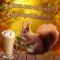 Good Morning, Have a nice day Good Day, Good Morning, Image Nice, Share Pictures, Animated Gifs, Friendship, Messages, Funny, Animals
