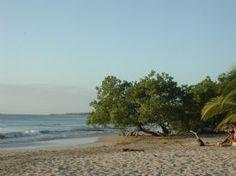 Playa Avellana Beach-Playa Avellana, Guanacaste