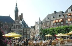Immerse yourself in Haarlem with raw herring breath