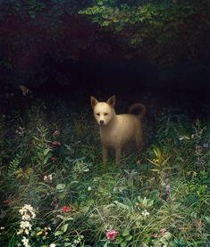Dog by Aron Wiesenfeld