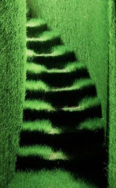 Ackroyd & Harvey ; artists that make grass grow like soft fur on, in and outside buildings/facades