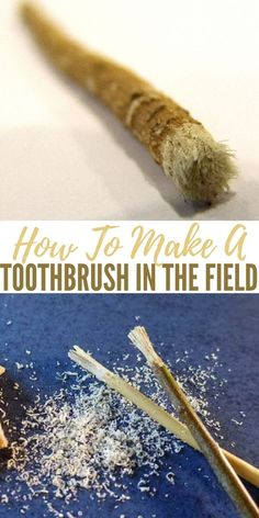 How To Make A Toothbrush In The Field - To make a twig toothbrush, simply cut a green twig about the diameter of a pencil and just as long. Pound the end of the twig with a clean, smooth rock. Then chew this end for a minute to moisten and soften the bristles; and finally, brush away.