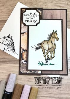 Set of 5 with Envelopes Barnyard Animal Note Free Shipping Horse Greeting Cards 5-Horse Note Cards set