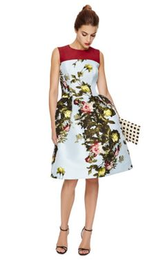 Rose Painting Jacquard Sleeveless Dress by Carolina Herrera - Moda Operandi