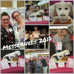 Messe Wels - Best in Show Love Cake, Competition, Wolf, Sugar, Baseball Cards, My Love, Artist, Movies, Movie Posters