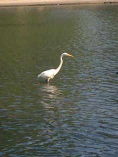(No r)egrets