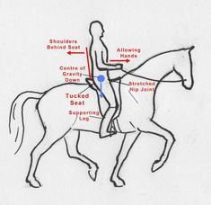 Sitting On A Horse In Balance - Horse Collaborative.  Brilliant article about the seat and aids