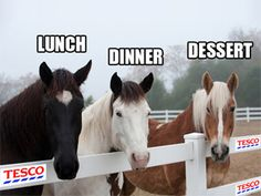 One of the many images doing the rounds on the social networks, as the horsemeat saga continues.