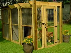 DIYNetwork.com has instructions on how to build an outdoor doghouse with a shaded, pergola-style run.