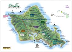 Hawaii Maps: Oahu Island Map - This highly detailed rental car road map of Oahu features highways, roads, airports, beaches, beach parks, harbors, landmarks and scenic lookouts, and is taken from the Oahu Drive Guide rental car magazine.