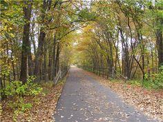 Awesome trail along the Farmington River. 14.9 miles from Farmington to Simsbury