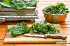 Rhabarber verwerten in der Küche und im Garten The Dish, Lettuce, Home Remedies, Homesteading, Spinach, Spices, Home And Garden, Herbs, Healthy Recipes