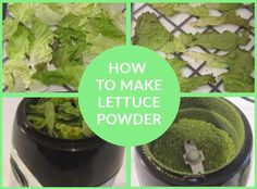 Lettuce powder contains all the nutrition of fresh lettuce, and is one of the easiest powders to make. If you live alone, you will probably have often ended up throwing half a lettuce away because it goes off before you can eat it. Lettuce, Cantaloupe, Make It Simple, Powder, Nutrition, Fresh, Canning, Eat, How To Make