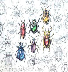 Gem insects secret garden inspiration colouring book johhana basford