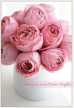 pretty pink roses Romantic Antike ....Beautiful for any celebration. Order David Austin roses and other scented garden roses online @ European distributor: www.parfumflowercompany.com