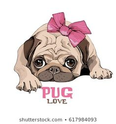 Find Pug Puppy Pink Bow Vector Illustration stock images in HD and millions of other royalty-free stock photos, illustrations and vectors in the Shutterstock collection. Pug Cartoon, Cartoon Pics, Pug Art, Pug Puppies, Jolie Photo, Pug Love, Disney Wallpaper, Clipart, Pet Portraits