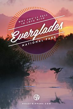 Everglades National Park is the largest subtropical wilderness in the United States.