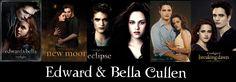 Edward & Bella from Twilight to Breaking Dawn Part 2