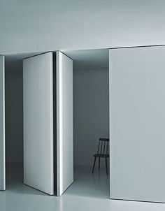 Pivot door. Would assume this is above our budget but could look at something like this in the master