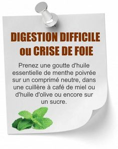huile essentielle menthe poivrée digestion Digestion Difficile, Natural Healing, Healthy Tips, Plastic Cutting Board, Health Fitness, Medical, Ayurveda, Bio, Meditation