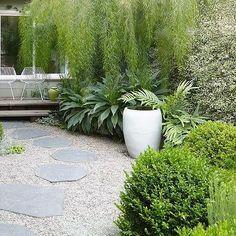 Garden inspiration from Flora Grubb's own garden #lush #green #getintoyouryard 📸by @mscaitlinatkinson