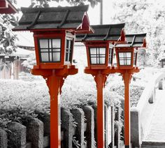 Kyoto, Japan. Experimenting with partial colour.