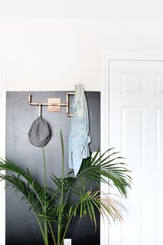 LOVE THIS! DIY Wood and Copper Coat Rack | Hello Lidy
